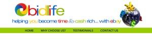 passive ebay income
